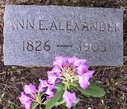 Ann Elizabeth <i>Crawford</i> Alexander