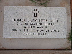 Homer Lafayette Wild