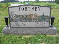 James W. Fortney