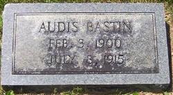 Audis Bastin