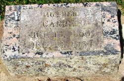Caroline Carrie <i>Hannemann</i> Bruck