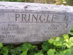 Alexander Pringle
