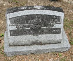 Asa Wayne Breland