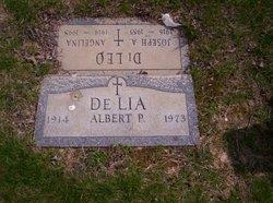 Albert P DeLia