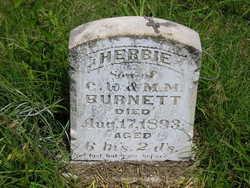 Herbie Burnett