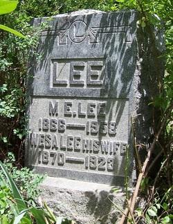 Merrill Ellsworth Lee