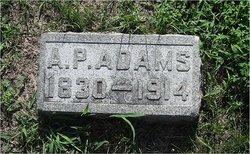 A. P. Adams