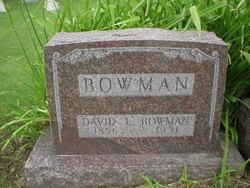 David L. Bowman