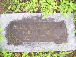 Allie May <i>Wayland</i> Brewer