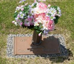 Charles Alfred Al Webster