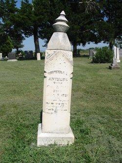 Rowenna L. <i>Packard</i> Anthony
