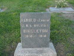 Harold J Singleton