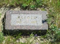 Harold O. Anderson