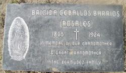 Bricida (Rosales) Ceballos Barrios