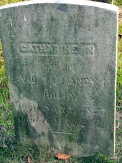 Catherine N. Holly