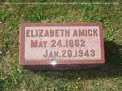 Elizabeth C <i>Johnson</i> Amick
