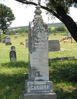 W B Cannon