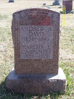 Martha Elizabeth Lizzie <i>Putnam Davis</i> Carpenter