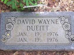 David Wayne Dueitt