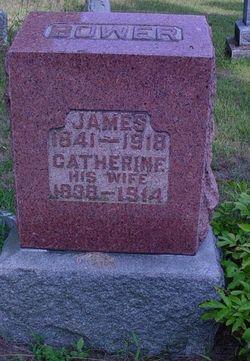 James Bower