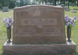Avis N. <i>Mitchell</i> Wilson