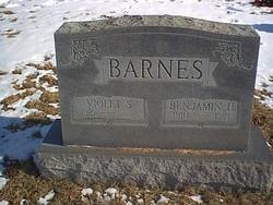 Violet Thelma <i>Sealock</i> Barnes