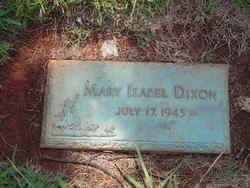 Mary Isabel Dixon