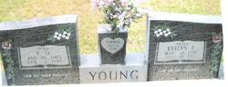 Y O Young