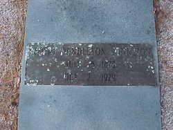 Robert Pendleton Johnston