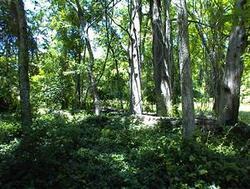 Battle-Cato Cemetery