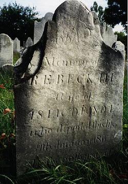 Rebecca Bogaert <i>Groesbeck</i> Fonda