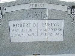 Robert B Alvis