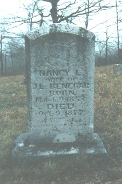 Nancy L. Benegar