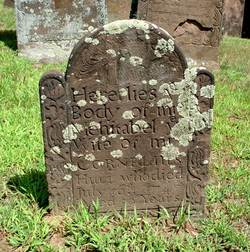Mehitabel <i>Graves</i> Hull