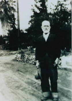 Stephen A Douglas Curtis
