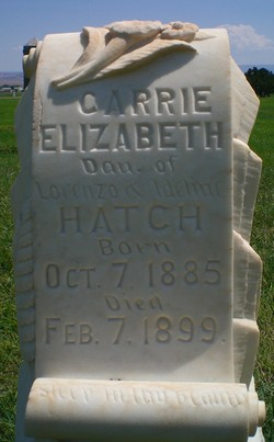 Carrie Elizabeth Hatch
