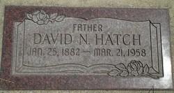 David Nelson Hatch