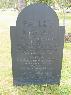 Harry Louis Bailey