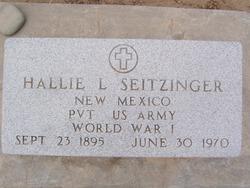 Hallie L. Seitzinger