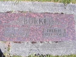 Alice C Burke