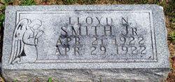 Lloyd N. Smith, Jr