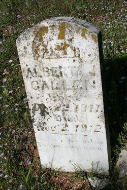 Alberta J Callen