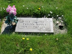 Evelyn M. Bippes