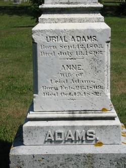 Anne <i>Dottridge</i> Adams