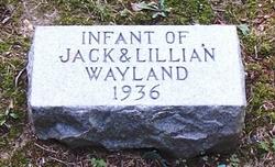 Infant Wayland