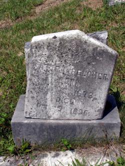 Katie L. Belcher
