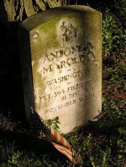 Antone A. Maroldo
