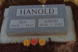 David Franklin Hanold