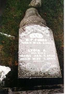 Lydia Ann <i>Denton</i> Fonda