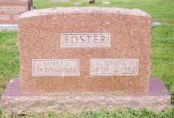Almedia Francis <i>Manning</i> Foster
